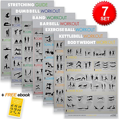 Set of 7 Large Laminated Exercise Fitness Posters for Great Home and Gym Workout - Everyday Crosstrain