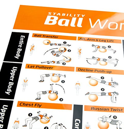 Stability Ball Workout Home Gym Laminated Poster. Exercises for Your Entire Body - Everyday Crosstrain