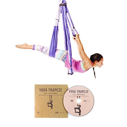 Purple Yoga Trapeze - Yoga Swing / Sling / Inversion Tool For Deep Core Strength - Everyday Crosstrain