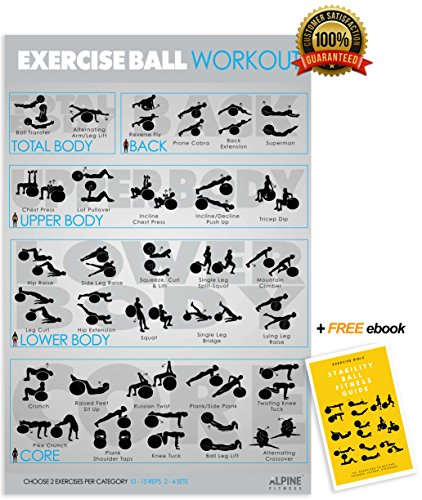 Laminated Exercise Ball Workout Poster and Stability Ball Fitness eBook Guide - Everyday Crosstrain