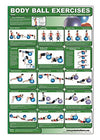 Laminated Body Ball Core Exercise Poster - Contains Many Core Muscle Exercises - Everyday Crosstrain