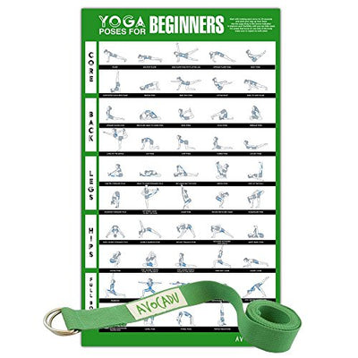 "Yoga Poses for Beginners Poster with 6"" Yoga Strap Included- Premium 16""x 24"" Poster with Illustrated Yoga Flow Poses for Easy Home Workouts - Everyday Crosstrain"