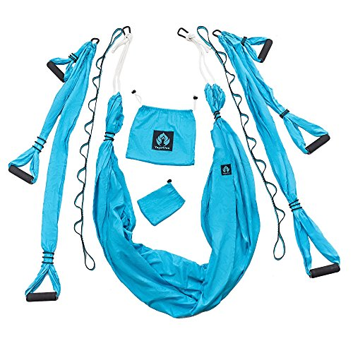 Yoga Swing / Aerial Trapeze Kit with two Durable Extension Straps Plus eBook - Everyday Crosstrain