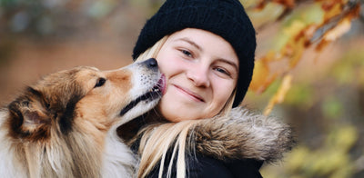 7 Natural Solutions to Help Your Dog's Bad Breath