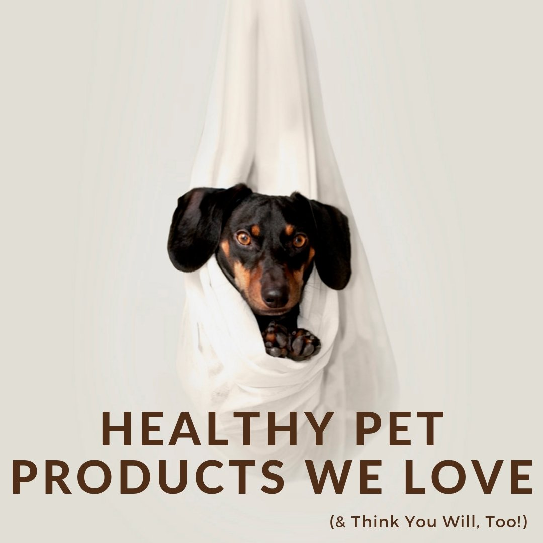 Healthy Pet Products We Love (& Think You Will, Too!)