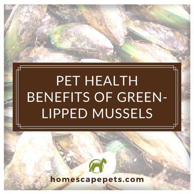 Pet Health Benefits of Green-Lipped Mussels