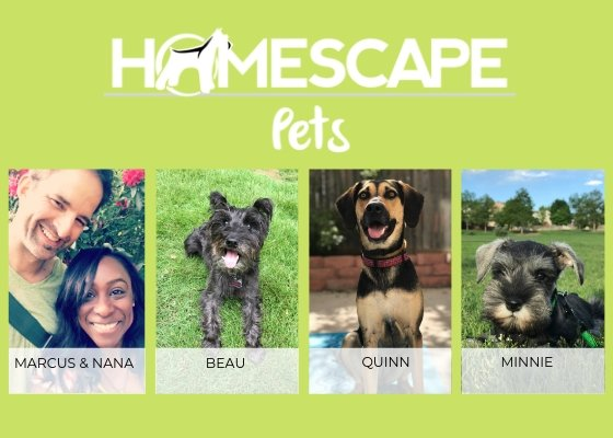 🐾 The People (and Paws) Behind Homescape Pets 🐾