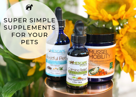 Simple Natural Supplements for Your Pet