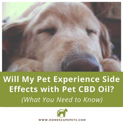 Will my pet experience side effects with CBD?