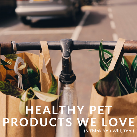 Healthy Pet Products We Love