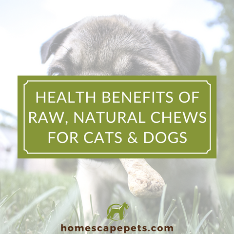 Natural Chew Treats for Dogs