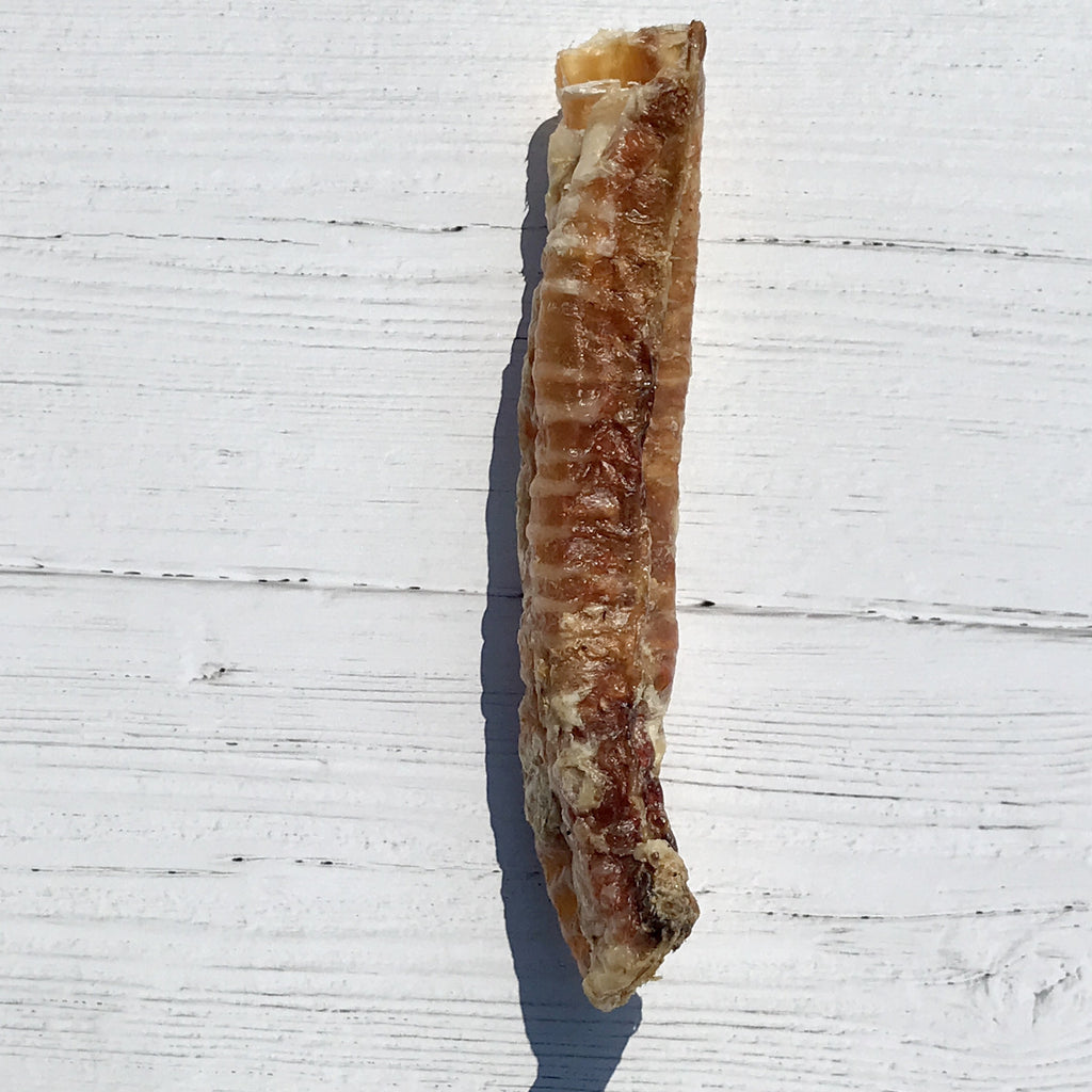 Air-Dried Lamb Trachea - Homescape Pets