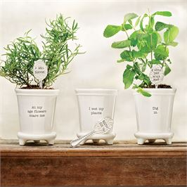 "Mud Pie Flower Pot with Silver Spoon Marker  ""I Wet My Plants"""