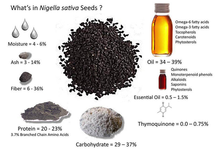 Black Seed Oil Benefits: Real or Myth?