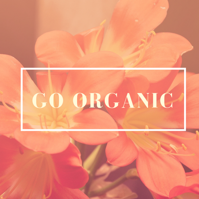 Why You Should Use Organic Products