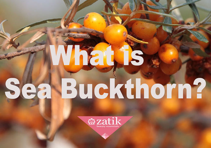 What is Sea-Buckthorn? Berry Beautiful Ingredient for Glowing Skin