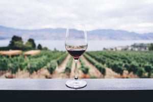 Wine as Antioxidant?