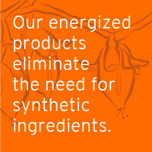 Energized products infographic