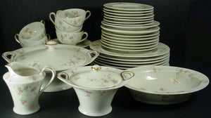 HAVILAND china PINK SPRAY New York 54-piece SET SERVICE for 8 including SERVING
