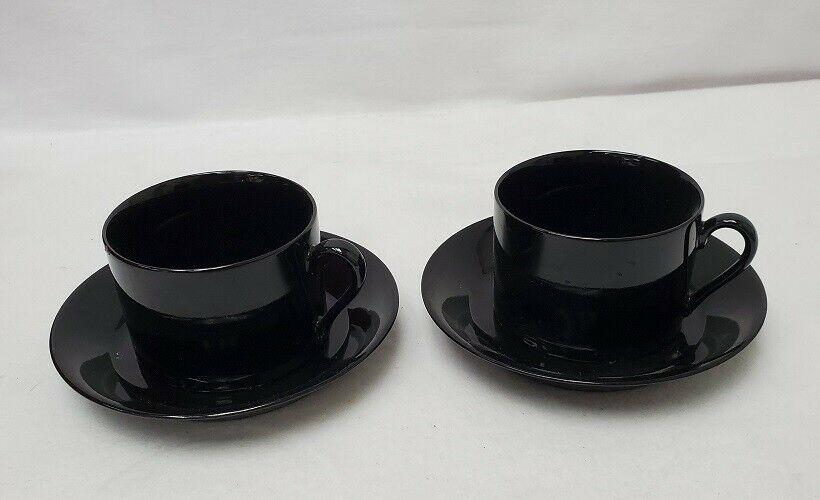 FITZ & FLOYD china TOTAL COLOR Spectrum Black set of 2 cups and 2 saucers