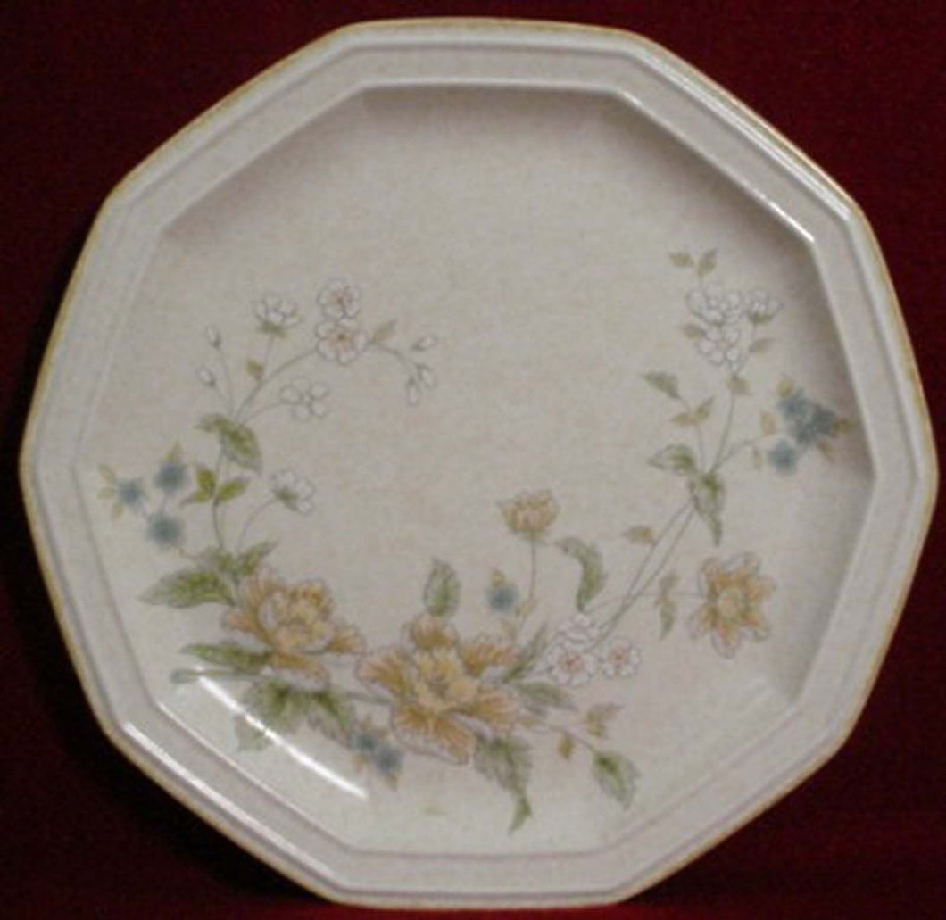 MIKASA china NAPOLI FE903 Dinner Plate @ 10 7/8