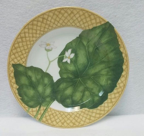 222 Fifth (PTS) china RAINFOREST Salad plate 8-1/8
