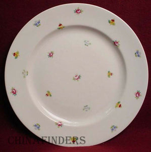 ROSENTHAL china SCATTERED FLOWERS pattern DINNER PLATE