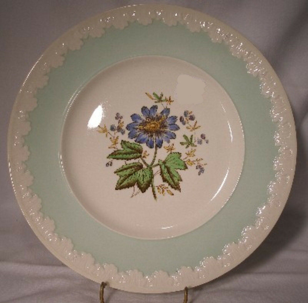 WEDGWOOD china HAMPTON COURT GREEN Dinner Plate @10 7/8