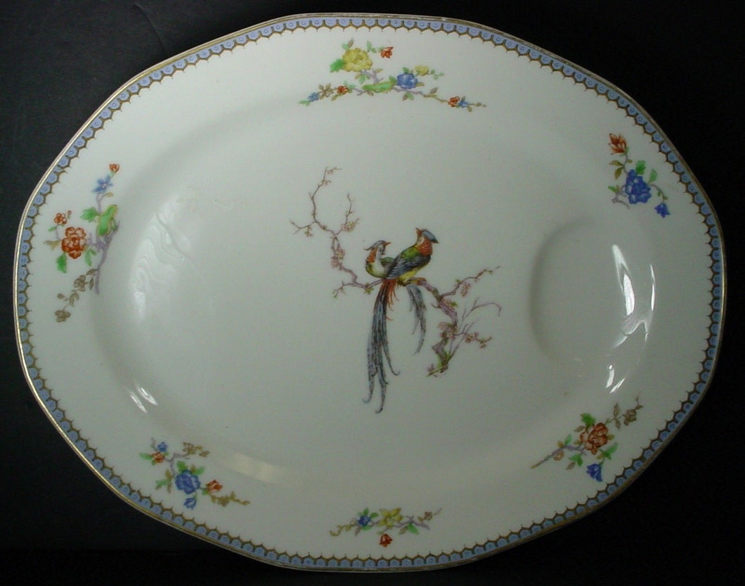 HAVILAND china PARADISE Schleiger 1219 France OVAL MEAT Serving PLATTER 13-5/8