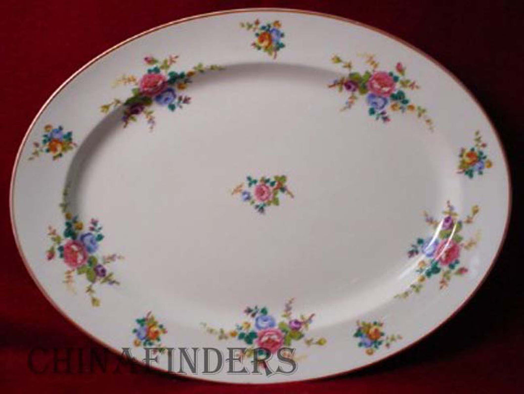 HAVILAND china CAMBRIDGE France pattern OVAL MEAT PLATTER 16-1/4