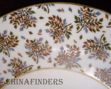 HAVILAND china 1877/1880 pattern OVAL MEAT Serving PLATTER 15-1/4""