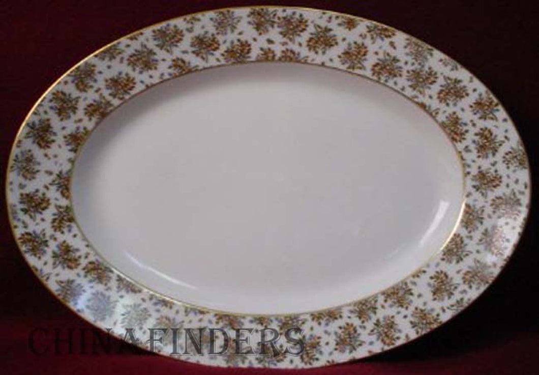 HAVILAND china 1877/1880 pattern OVAL MEAT Serving PLATTER 15-1/4