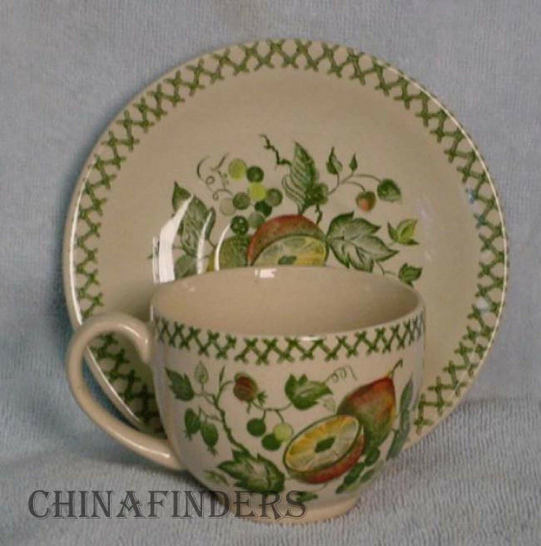 JOHNSON BROTHERS china ARBOR pattern CUP & SAUCER Set 2-5/8