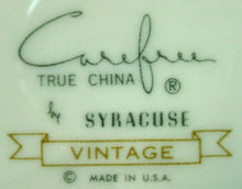 SYRACUSE china VINTAGE carefree DINNER PLATE 10""