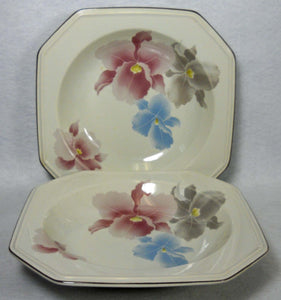 MIKASA china BEAU MONDE F3007 pattern Soup/Salad Bowl - Set of Two (2) - 8-1/2""