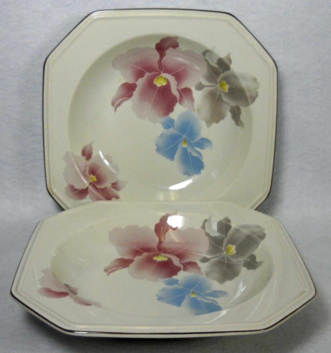 MIKASA china BEAU MONDE F3007 pattern Soup/Salad Bowl - Set of Two (2) - 8-1/2