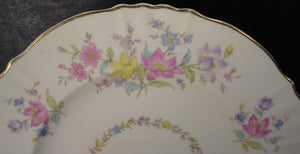 "SYRACUSE china BRIARCLIFF pattern Set of 9 DINNER PLATES - 10"" - worn"