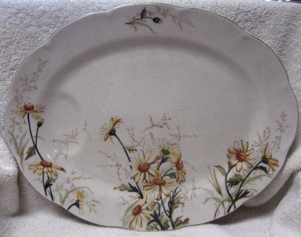 HAVILAND china SHASTA NY pattern OVAL SERVING Platter