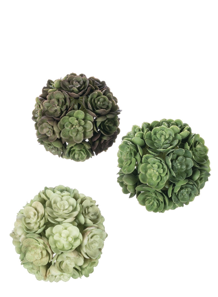 Succulent Orbs (boxed set)
