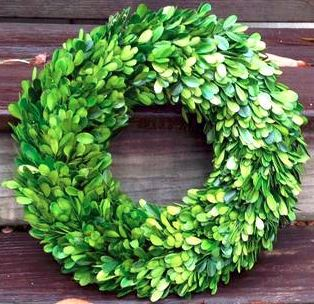 Preserved Boxwood Wreath, 14""