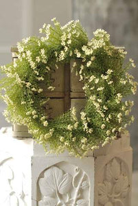 "16"" Astilbe Wreath, White"