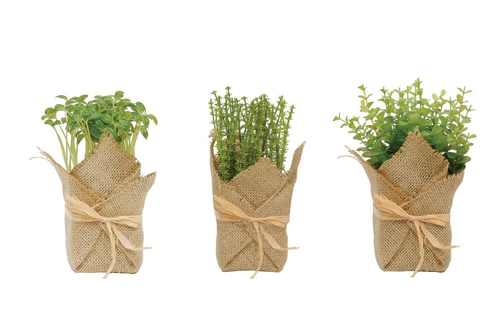 Burlap Wrapped Potted Herb