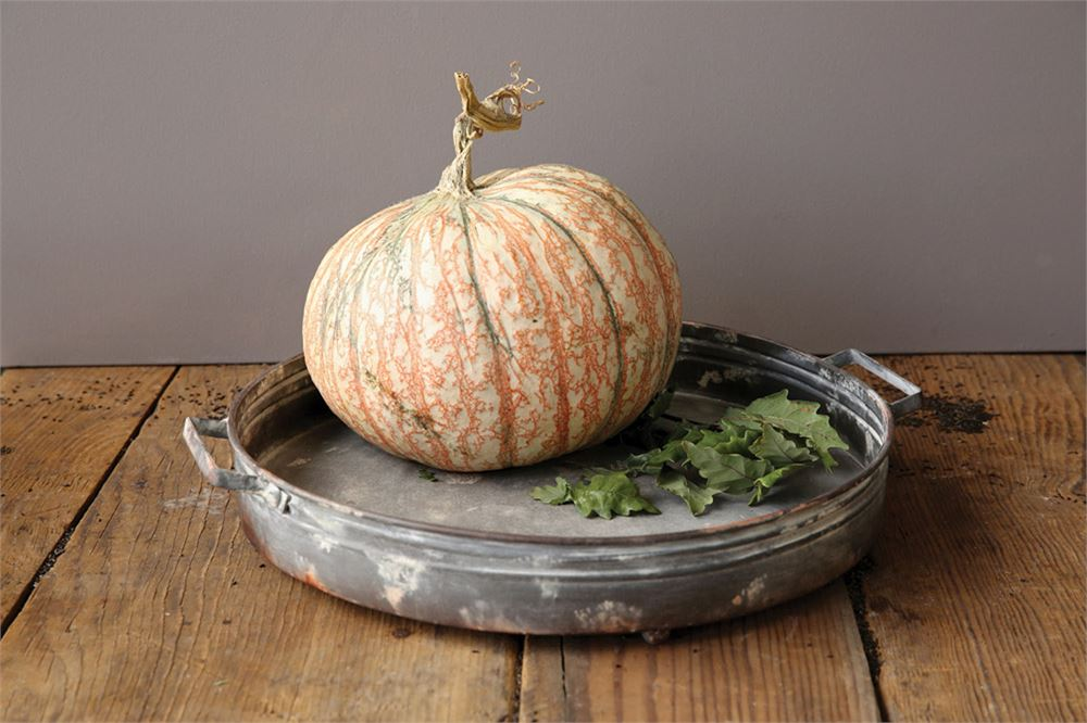 Round Farmhouse Metal Tray