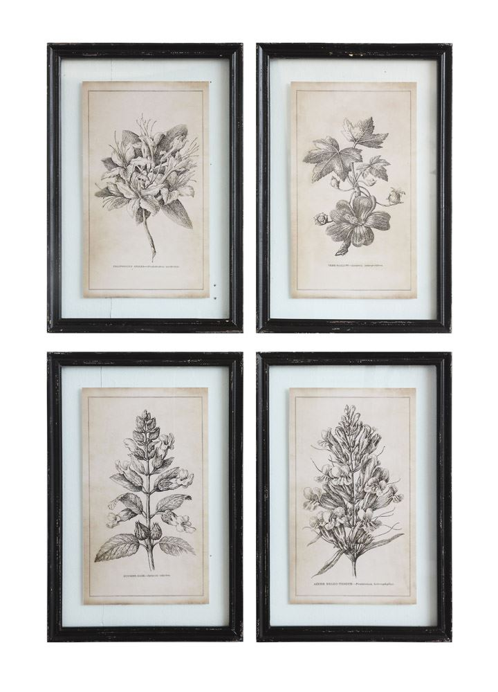 Wooden Framed Antiqued Floral Prints (In-Store Pickup Only)