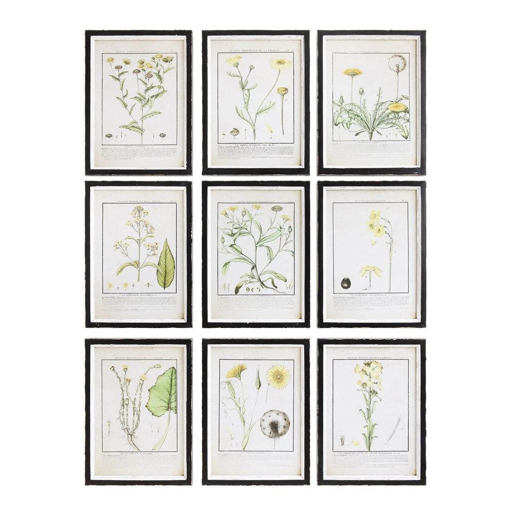 Flower Framed Wall Decor