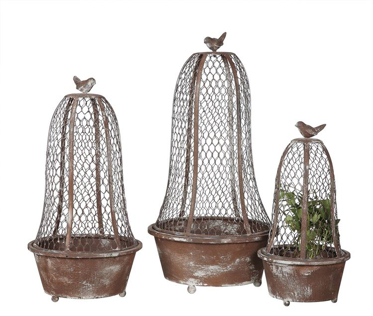 French Styled Wire Planters & Cloche