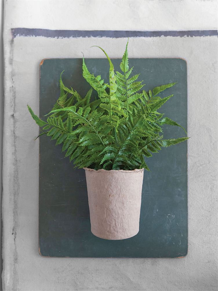 Faux Fern Plant in Paper Pot