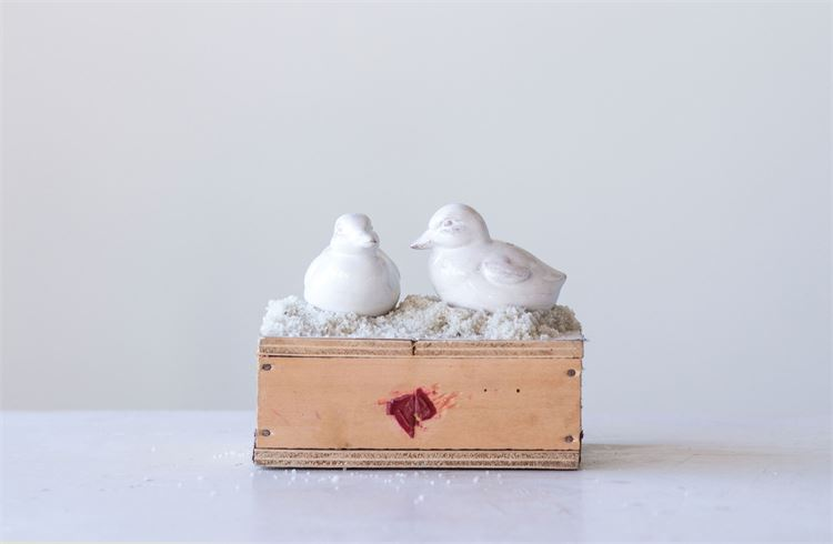 Ceramic Duck Salt & Pepper Shakers