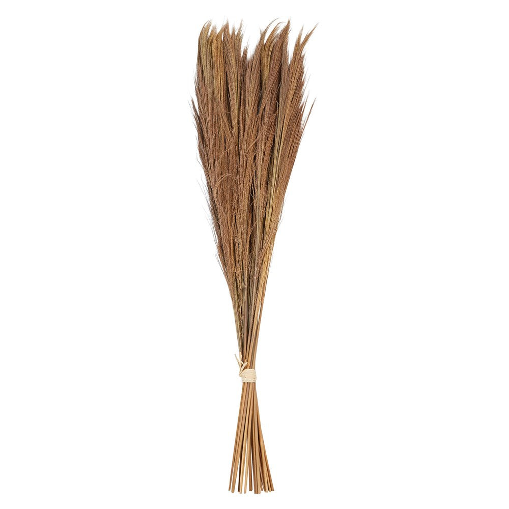 "Dried Natural ""Broom"" Tiger Grass Bunch"