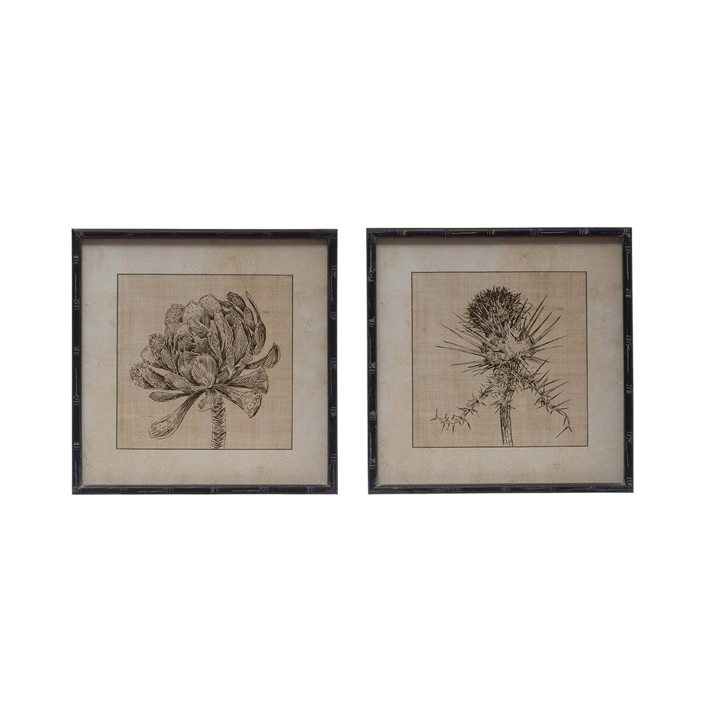 Large Square Wood Framed Botanical Print